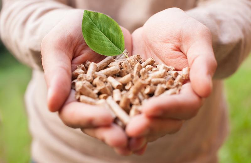 La chaudière biomasse industrielle